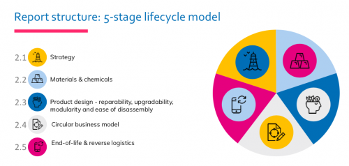 5-stage lifecycle model